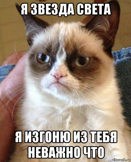 Мемы от Кота Бегемота и от форумчан - Страница 2 Ugryumyy-kot_231184618_orig_