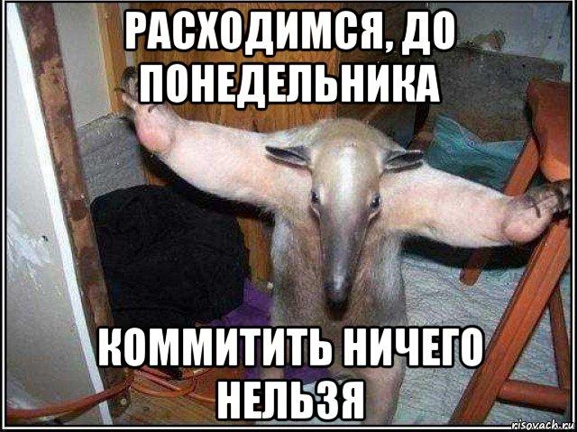 spokoyno_236926814_orig_.jpg