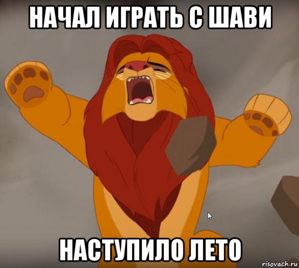 http://risovach.ru/upload/2016/11/mem/stradayucshiy-simba_128945759_orig_.png